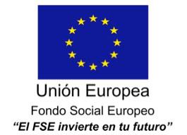 colexio_guillelme_brown-union-europea